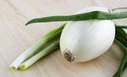 Onion and spring onion on a wooden table Stock Image