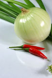 Onion, spring onions and couple chilli. On white background Royalty Free Stock Images