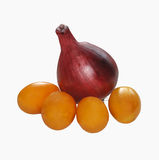 Onion and tomatos Royalty Free Stock Photography