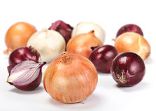 Onion vegetable Stock Image