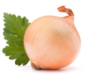 Onion vegetable bulb and parsley leaves still life Stock Photo