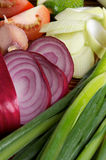 Onion and Vegetables Stock Images