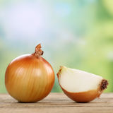 Onion vegetables in summer Royalty Free Stock Photos