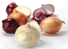 Onion on white Stock Photos