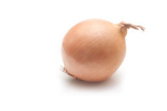 Onion on White Background. Royalty Free Stock Photos