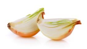 Onion on white background Royalty Free Stock Image