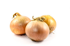 Onion on a white background. Fresh ,bulbs of onion, on a white background Royalty Free Stock Image