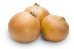Onion in a white background Stock Photos