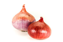 Onion on white background Royalty Free Stock Images