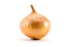 Onion on white blackground Royalty Free Stock Photos