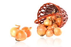 Onion and wicker basket Stock Photos