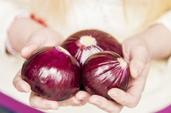 Onion. Woman showing holding red onions Royalty Free Stock Photo