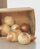 Onion on the wood desk Royalty Free Stock Photos