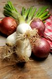 Onion on wood table kitchen surface Stock Images