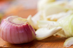 Onion on wooden board Royalty Free Stock Image