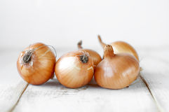 Onion on wooden table. Royalty Free Stock Photography
