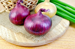 Onion yellow and purple on board Stock Photos