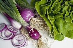 Oniond et salade rouges Photos libres de droits