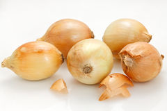 Onions. Five Onions in white background Royalty Free Stock Image