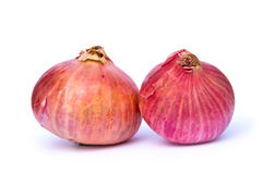 Onions! Royalty Free Stock Images