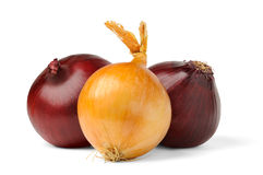Onions. Three onions over white background royalty free stock photos