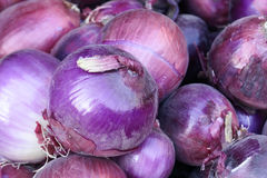 Onions Royalty Free Stock Images