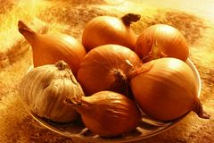 Onions. On a plate. Illumination by a neon lamp Royalty Free Stock Image