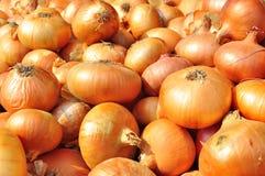 Onions. At the market,Romania royalty free stock photos