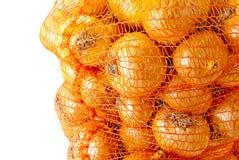 Onions. Stock Image