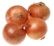 Onions. Image of four onions (Allium cepa) isolated against a white background Royalty Free Stock Photo