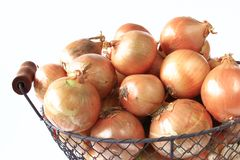 Onions. Many big onions in a decoratively wire basket Stock Photos