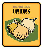 Onions. Vegetables color label, Fresh Onions Royalty Free Stock Images