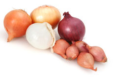 Free Onions! Royalty Free Stock Photography - 2443717