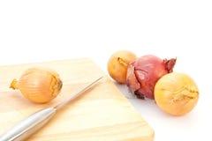 Onions Stock Image