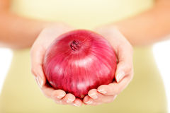 Onions Royalty Free Stock Photography