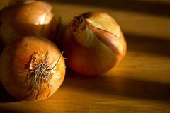 Free Onions Royalty Free Stock Photos - 27092808