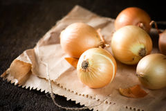 Onions. Raw onion close up on the table Stock Photography