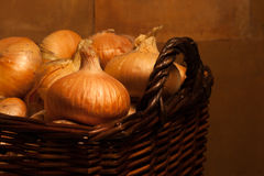 Onions. Many onions in brown basket Royalty Free Stock Photography