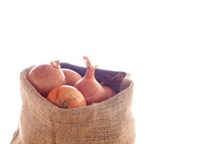 Onions. A Sack of Onion on White Background Stock Photos