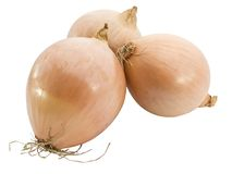 Onions stock photography