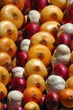 Onions. Close up of piles of different-coloured onions on a market stall Royalty Free Stock Images