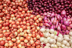 Free Onions Royalty Free Stock Photos - 46136908