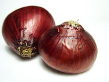 Onions. Two onion royalty free stock images