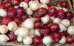 Onions!. Red and white onions at the market royalty free stock photography