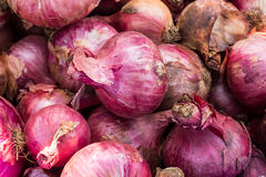 Free Onions Royalty Free Stock Images - 56932069