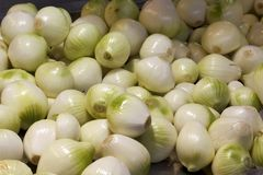 Onions background Royalty Free Stock Photo