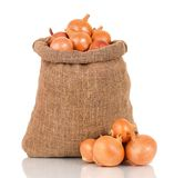 Onions in bag Stock Images