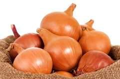 Onions in bag Royalty Free Stock Images