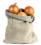 Onions in bag Stock Photos
