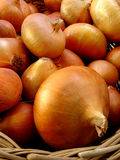 Onions in the basket Royalty Free Stock Images